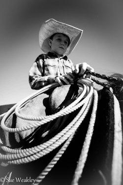 boy on horse-1